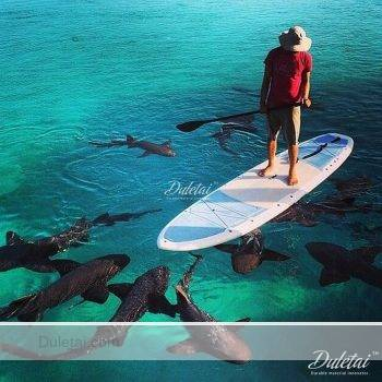 double chamber paddle board
